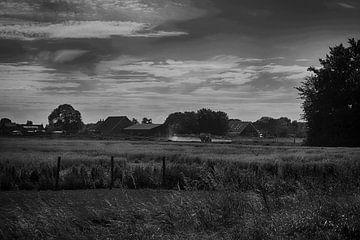 Paysage hollandais en noir / blanc
