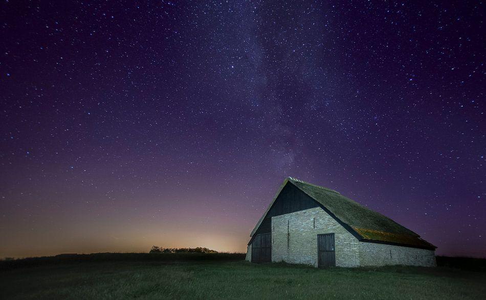 Texel foto Schapen boet bij nacht