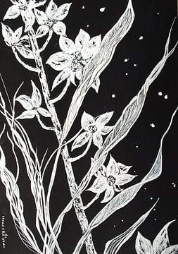 Orchideen (1) von Ineke de Rijk