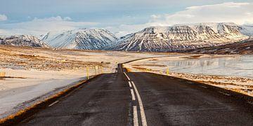Kalte Straße von Albert Mendelewski