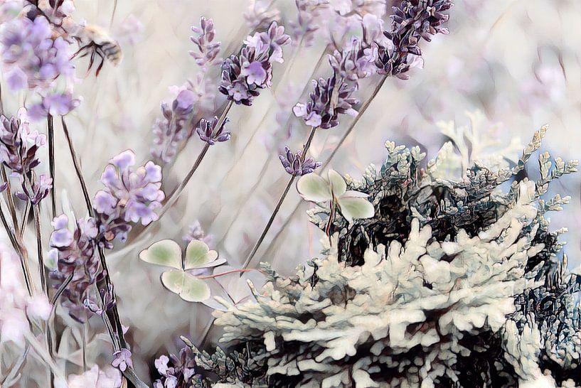 Lavendel Klee und Tanne Aquarell von Patricia Piotrak