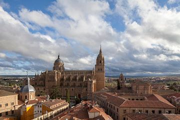 Alte und Neue Kathedrale mit Universität, Salamanca, Kastilien-León, Spanien