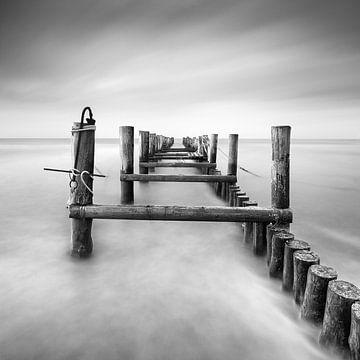 Invisible Path (b/w) von Florian Schmidt