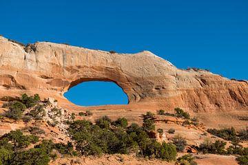 Wilson's Arch, Moab van Richard van der Woude
