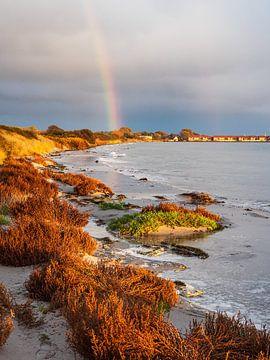 Oostzeekust op het eiland Moen in Denemarken van Rico Ködder
