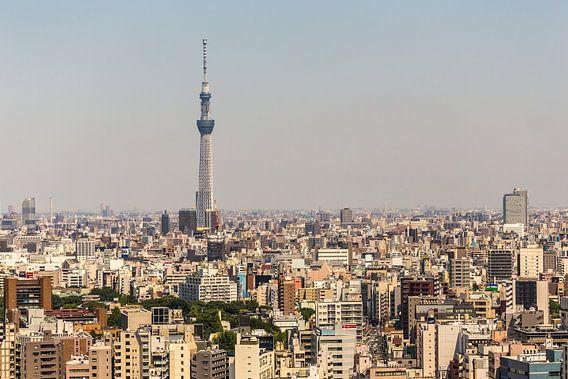 TOKYO 35 van Tom Uhlenberg