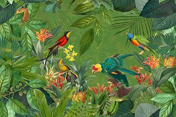 Tropenparadies von Andrea Haase