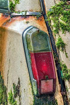 achterlicht bedekt met mos van een sloopwagen von W J Kok