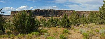 Crooked River Canyon, Oregon, USA von Jeroen van Deel