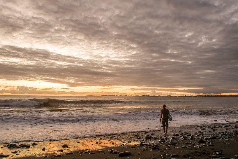 Surfing in Hawaii van Jim De Sitter