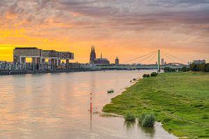 Die Skyline von Köln von Michael Valjak