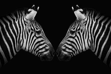 Zebra twins in zwart-wit van Marjolein van Middelkoop