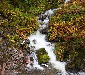 Wasserfall in Glencoe, Schottland von Johan Zwarthoed