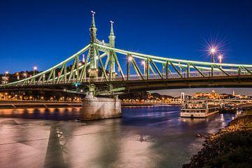Freiheitsbrücke von Jeroen de Jongh