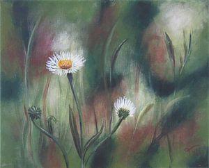 """Impressionistisch schilderij """"Gewone Margeriet"""""""