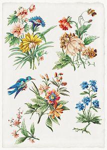 Blumenmuster mit einem blauen Vogel, Giacomo Cavenezia