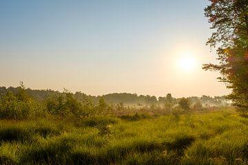 Sonnenaufgang über der Laambeek-Quelle von Johan Vanbockryck