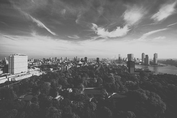 Skyline Rotterdam Minimal van Sander Monster