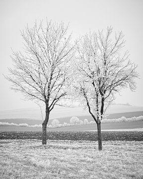 Winter-Ernte 2 von Keith Wilson Photography