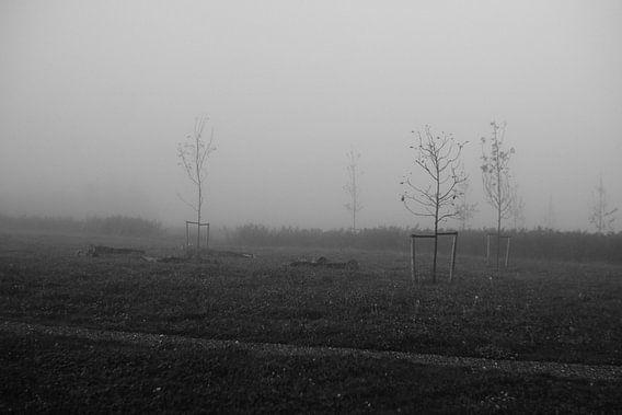 Speelbos net aangeplant van Jeroen de Lang