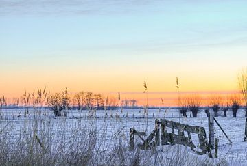 winterse oranje lucht van Tania Perneel