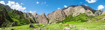 Himalaya panorama van Jeroen Mikkers