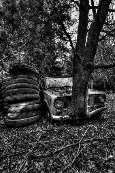 Lost in the Woods 2 van Kirsten Scholten