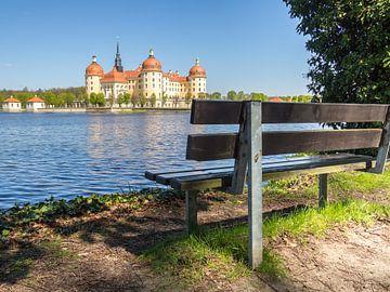 Gezicht op kasteel Moritzburg bij Dresden van Animaflora PicsStock