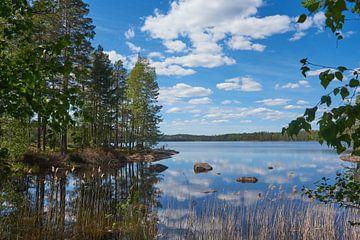 Zweeds landschap 153 van Geertjan Plooijer