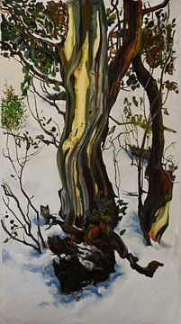 in Winter Erde und Natur von KB Prints