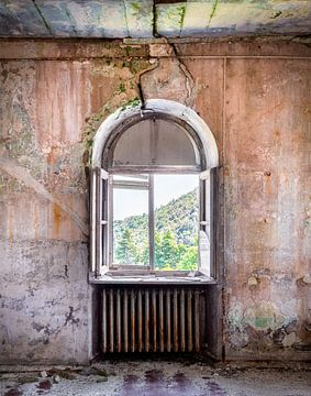 Fenêtre en déclin. sur Roman Robroek