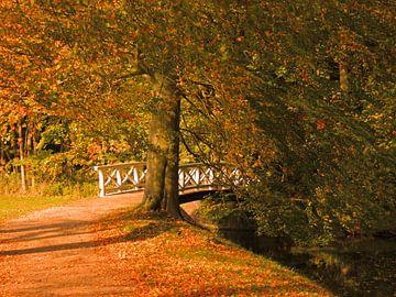 Bridge on Elswout estate van Ben Hoftijzer