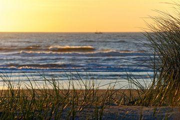 Abendlicht am holländischen Strand von Dirk-Jan Steehouwer