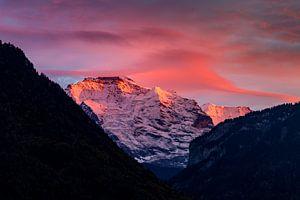 Jungfrau vanuit Interlaken in het avondlicht