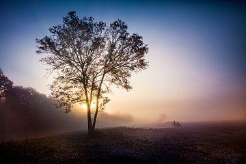 Morgendliche Sonnenschein-Landschaft von Freddy Hoevers
