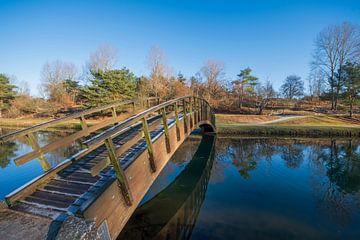 Houten bruggetje Amsterdamse waterleidingduinen van Foto Amsterdam / Peter Bartelings