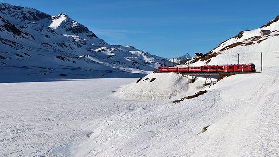 Rhätische Bahn - Berninapas - Graubünden - Zwitserland