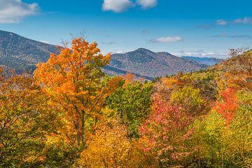 Herfst in New Hampshire van Peter Leenen
