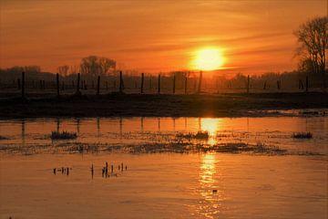 Bevroren Diest - landschap von Maarten Honinx