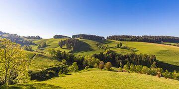 Lente bij St. Peter in het Boven-Schwarzwald van Werner Dieterich
