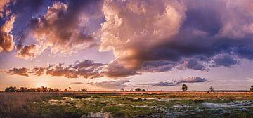 Sonnenuntergangs-Panorama Kampina von Ronne Vinkx