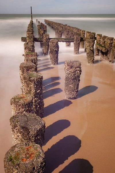 Wellenbrecher in der Nähe von Domburg (Niederlande) von Albert Mendelewski