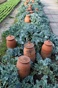 Töpfertöpfe im Gemüsegarten der Villa Augustus von Nicolette Vermeulen