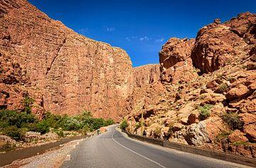 Weg door de Todrakloof, Marokko van Rietje Bulthuis