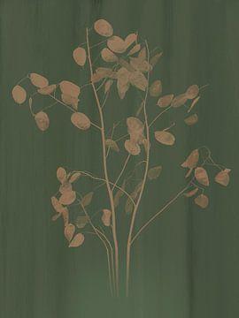 Botanische print judaspenning, groen van Joske Kempink