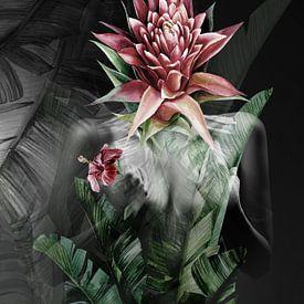 Secret garden collage sur Dreamy Faces