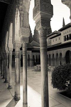 Het Alhambra in Granada sur Marian Sintemaartensdijk