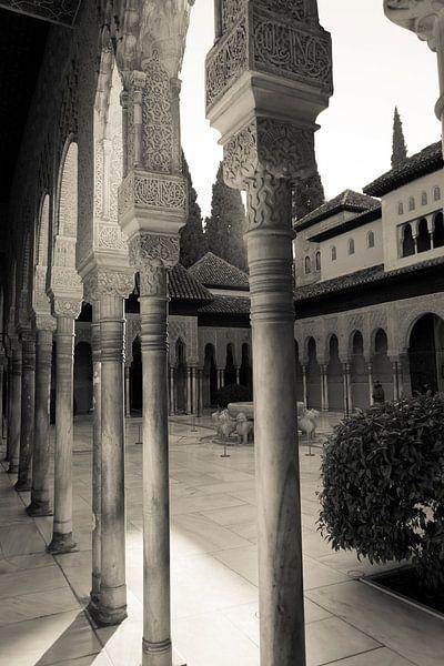 Het Alhambra in Granada van Marian Sintemaartensdijk