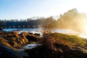 het begin van de Rijn in zwitserland van photographili _