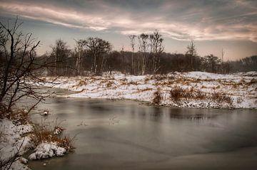Winterlandschaft Naturschutzgebiet von Marjolein van Middelkoop